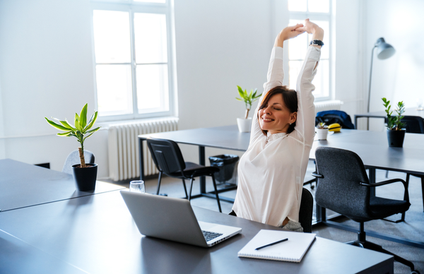 6 Dimensions of At-Work Wellbeing