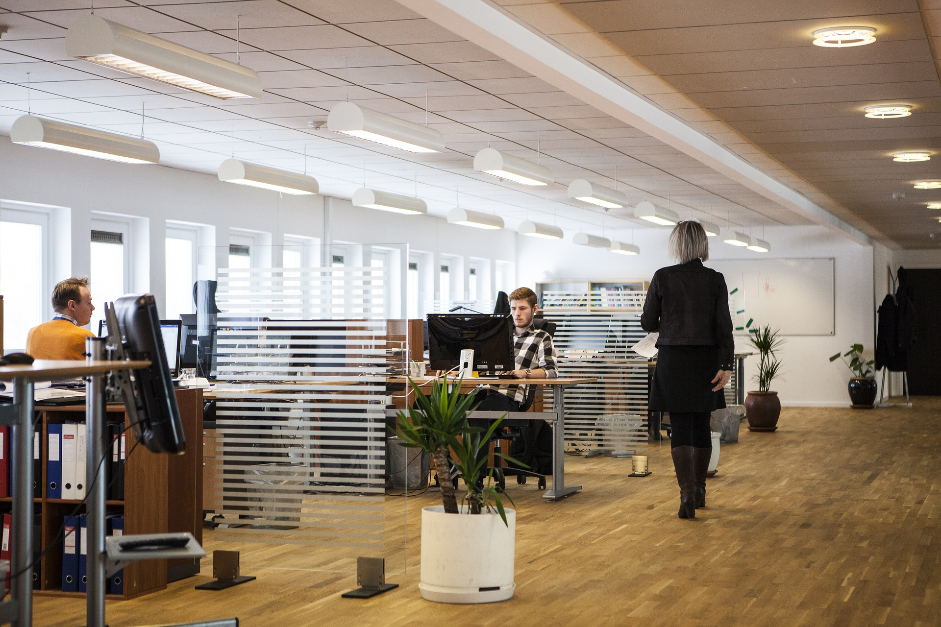 Building a New Office Space? Should You Choose Cubicles or Private Offices?